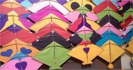 इन रंग-बिरंगे पतंगों के साथ मनाएं  इस साल की मकर संक्रान्ति