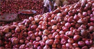 बारिश और बाढ़ से बढ़ सकती है प्याज की कीमत, फसल खराब होने की है आशंका