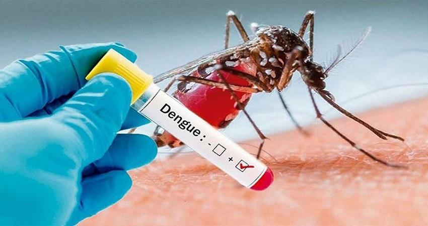 dengue cases increases in delhi amid coronavirus pandemic kmbsnt
