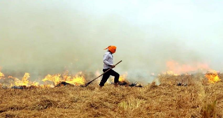 Punjab Haryana present plan for stubble disposal prevention from Pollution KMBSNT