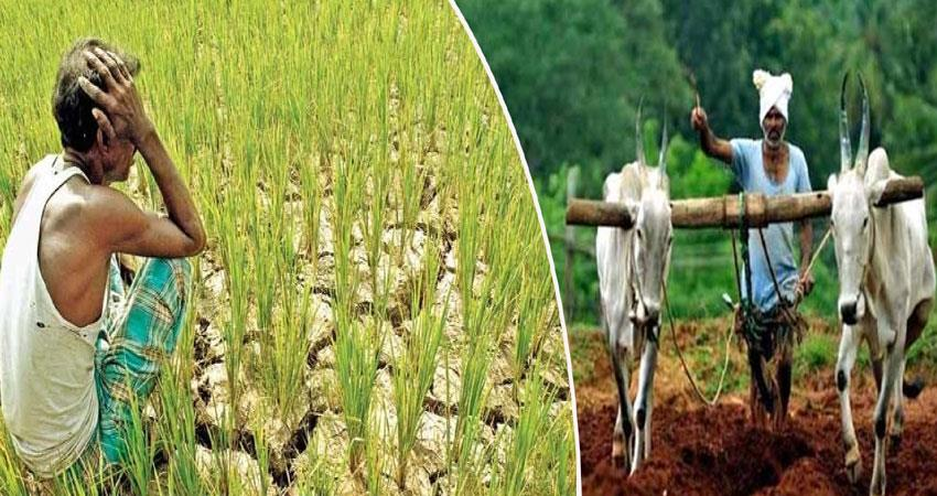 pm kisan samman nidhi scheme new farmers not credited money anjsnt