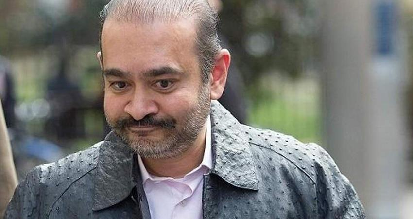 nirav modi loses case against extradition in uk pnb is a case of fraud prshnt