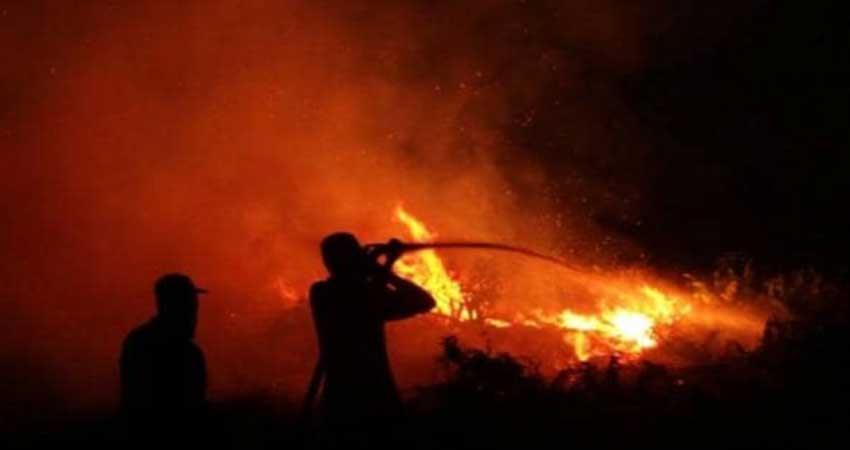 fire breaks out in sayyad building in mumbai