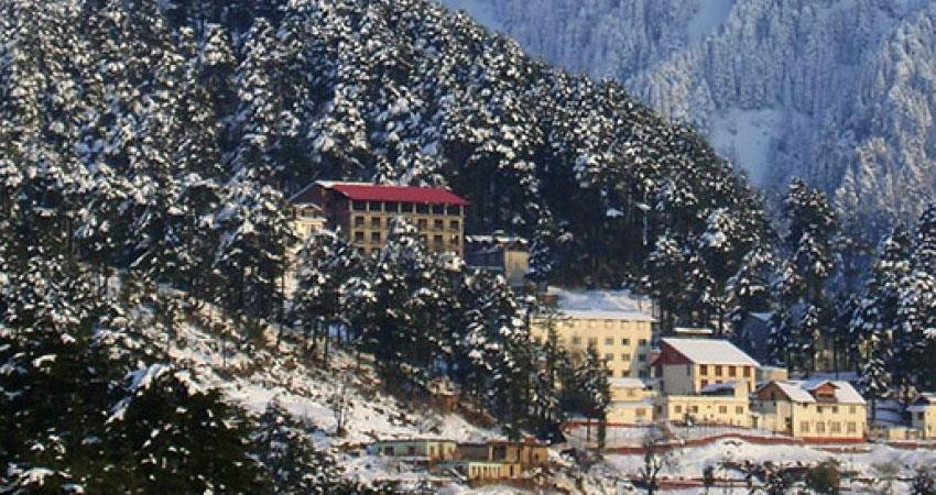 jammu and kashmir high court direct cbi probe illegal constructions famous hill resort patnitop