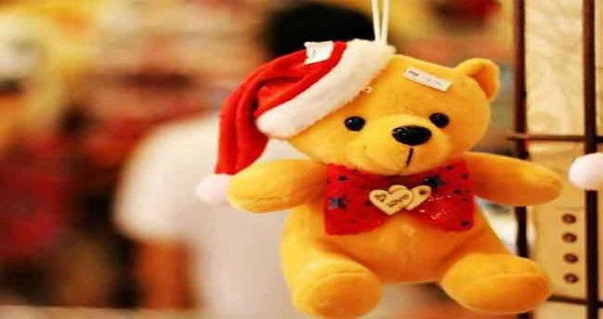 best tips to celebrate teddy day