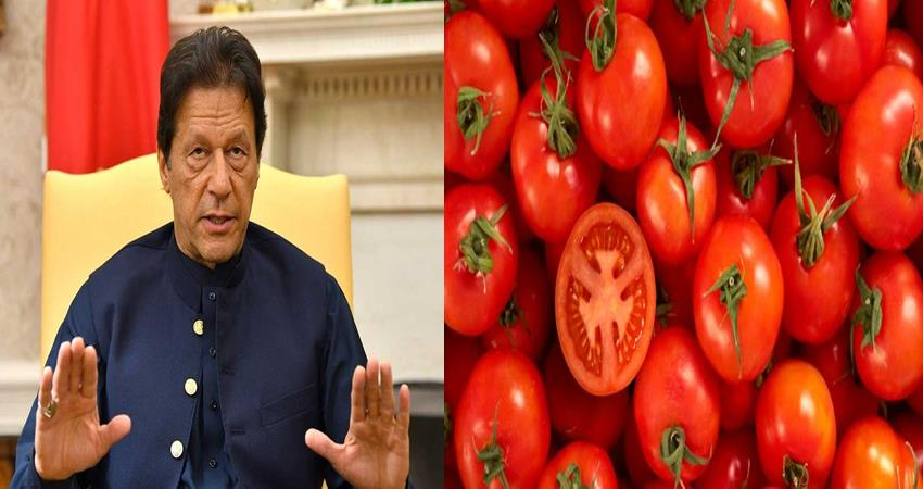 tomato is getting 300 rupees per kg in pakistan after ceasing trade with india