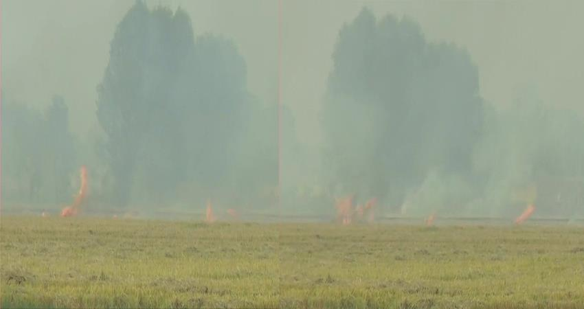 punjab stubble burning continue air pollution delhi supreme court