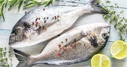 दिल से जुड़ी बीमारी के जोखिम को कम करने के लिए खाएं फैटी मछली