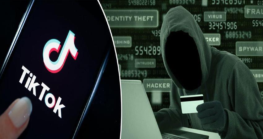 tiktok pro scam cyber crime fake message anjsnt