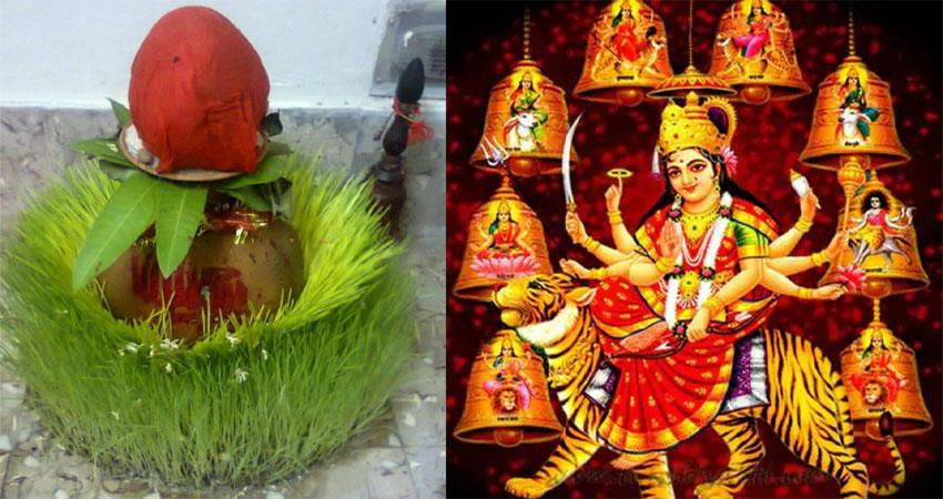 shardiya navratri 2021: the signs of the future are hidden in the colors of ''''barley'''' musrnt