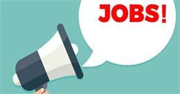 सरकारी नौकरी : MES ने इन पदों पर निकाली बंपर Vacancy, ऐसे करें Apply