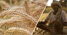 'खेती के असली मुद्दों पर ध्यान क्यों नहीं'