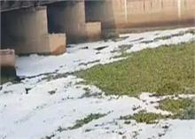 यमुना में छाया जहरीला फेन, DPCC ने प्रदूषण कर रही दो इकाईयां की बंद, 15 पर आदेश जारी