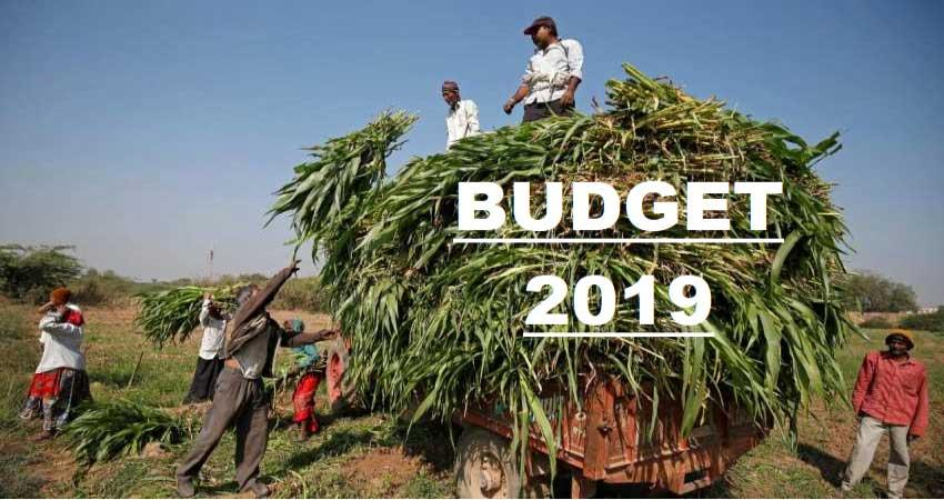 whether this time the budget will be ''''farmer friendly''''