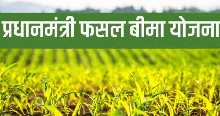 Five years of Prime Minister Crop Insurance Scheme aljwnt
