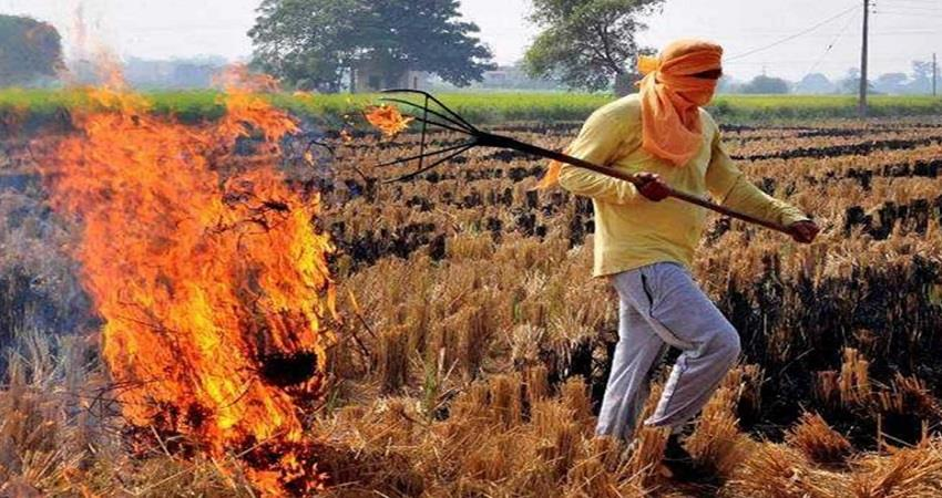 expenditure-of-18-hundred-crores-the-incidence-of-stubble-burning-in-punjab-increased-prsgnt