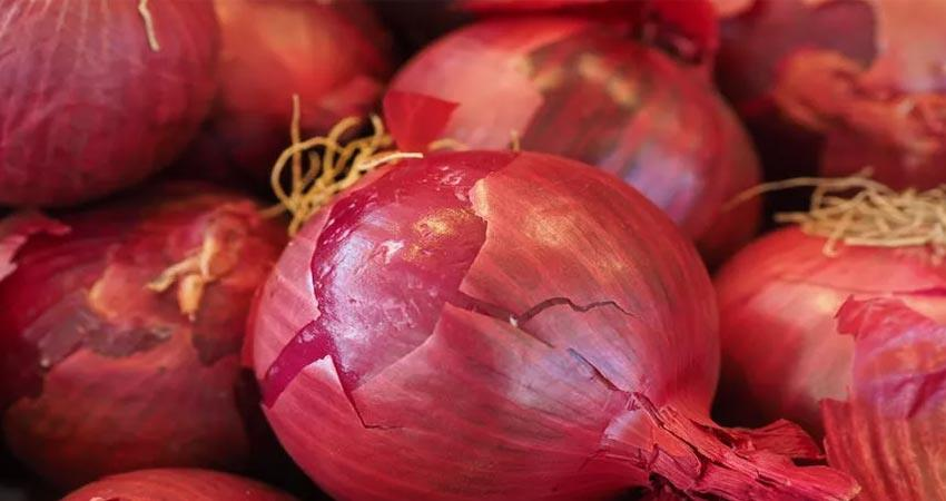 benefits of onion peels for skin and allergy in hindi