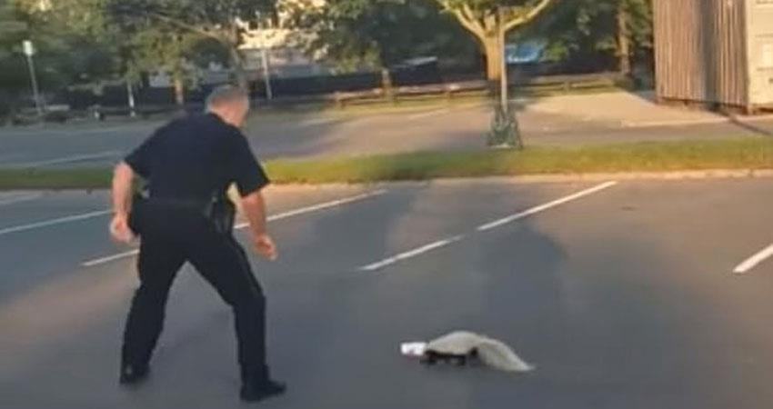 helping this animal overwhelmed the police