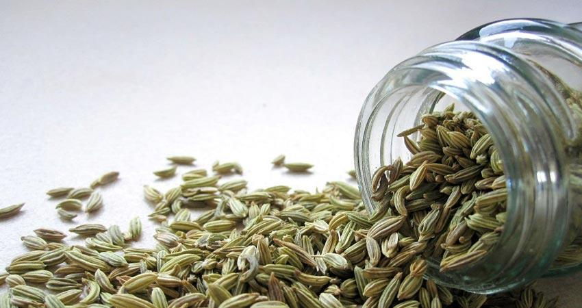know the benefits of fennel for eyesight other health benefits