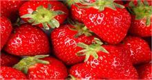 न्यूजीलैंड में स्ट्रॉबेरी के अंदरमिली सूई, मचा हड़कंप