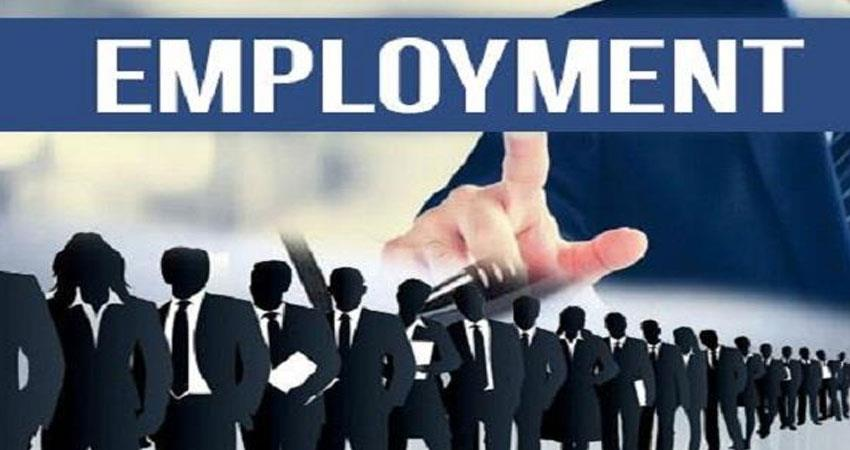 employment affected due to economic slowdown in the country