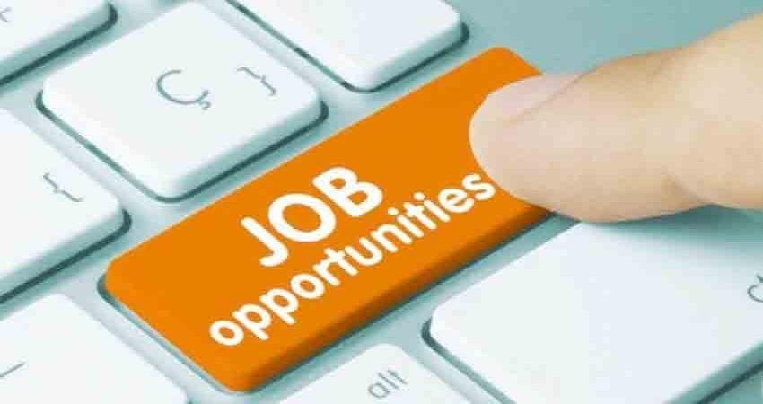 ibps-rrb-application-2020-bumper-recruitment-in-rural-banks-sohsnt