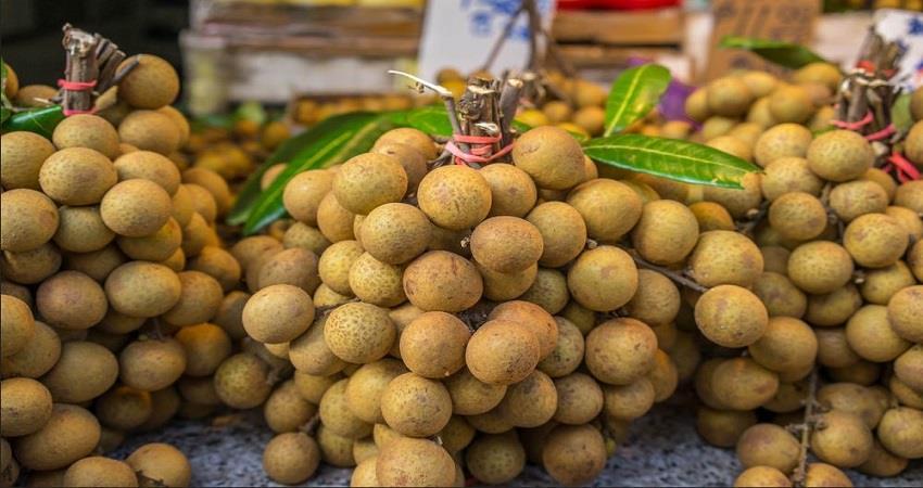 muzaffarpur-this-fruit-of-chinese-origin-is-useful-in-war-against-corona-prsgnt