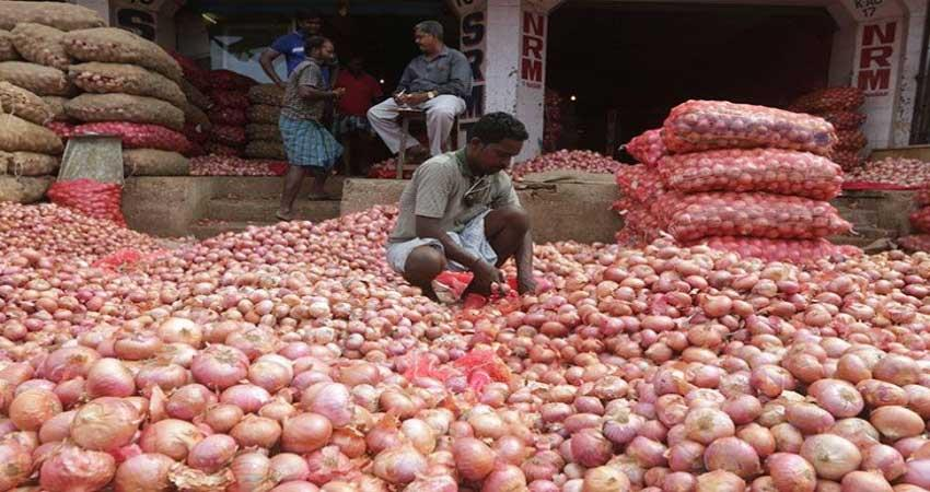 Onion news central government Onion price hike onion rates