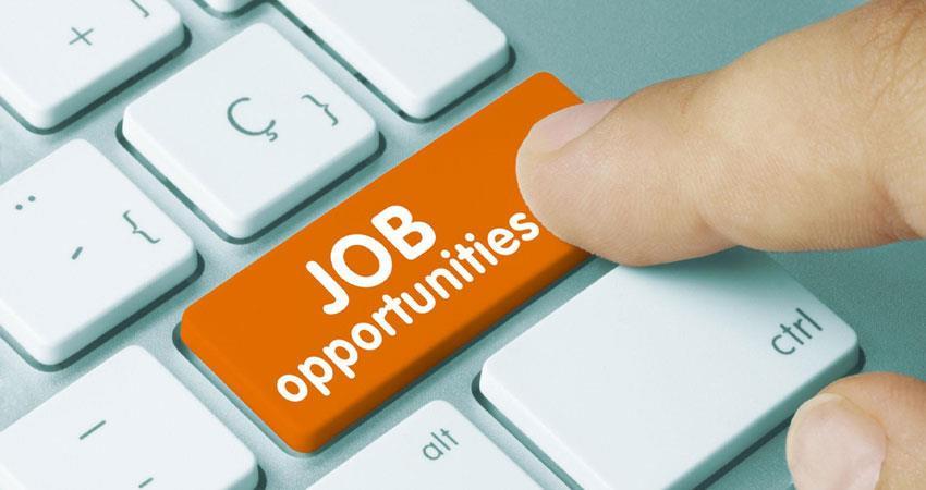 bhartiya-pashupalan-nigam-limited-has-vaccancy-candidates-can-apply