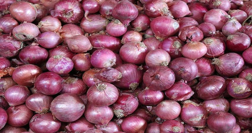 budget-of-the-kitchen-will-got-increased-onion-price-get-double-by-diwali
