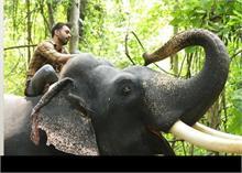 पुलकित सम्राट ने शेयर किए  हाथी मेरे साथी के BTS, देखें तस्वीर