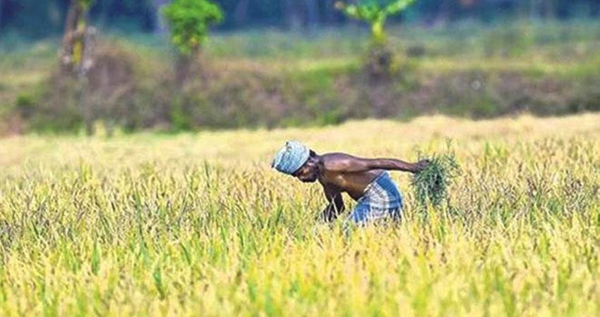 Government gave financial relief to farmers of Assam Meghalaya PM Kisan Scheme PRSHNT