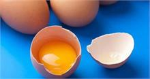 अगर फ्रिज में रखते हैं अंडे तो हो जाए सावधान! सेहत को हो सकता है नुकसान
