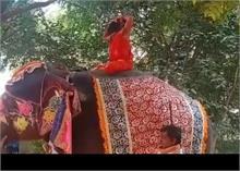 योगगुरु रामदेव ने फिर की हाथी की सवारी, लेकिन इस बार बरती पूरी सावधानी