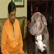 OMG! चाकू की नोक पर व्यापारी का कुत्ता किडनैप, रखा 50 हजार का इनाम
