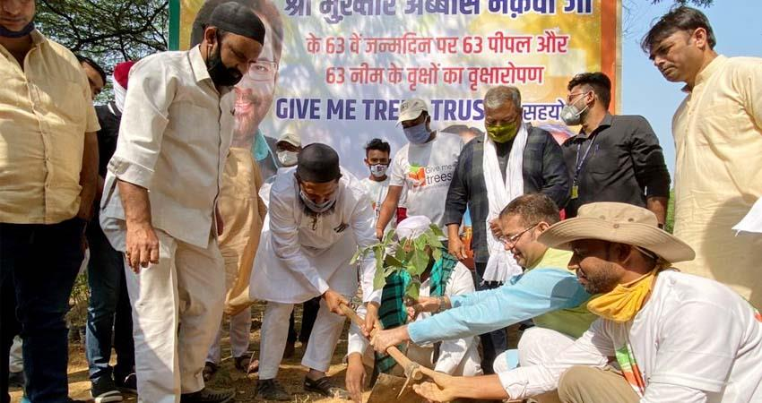 muslims plant saplings in temple on minister mukhtar abbas naqvi birthday aljwnt