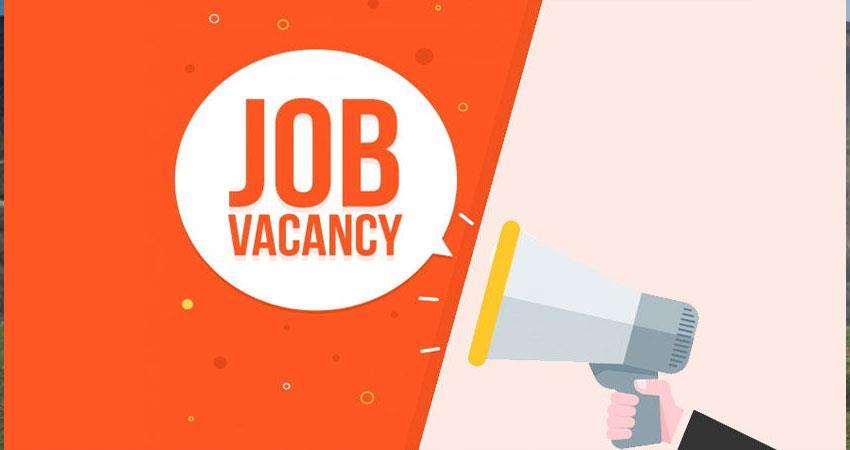 various job vacancies in ibps for clerk apply fast