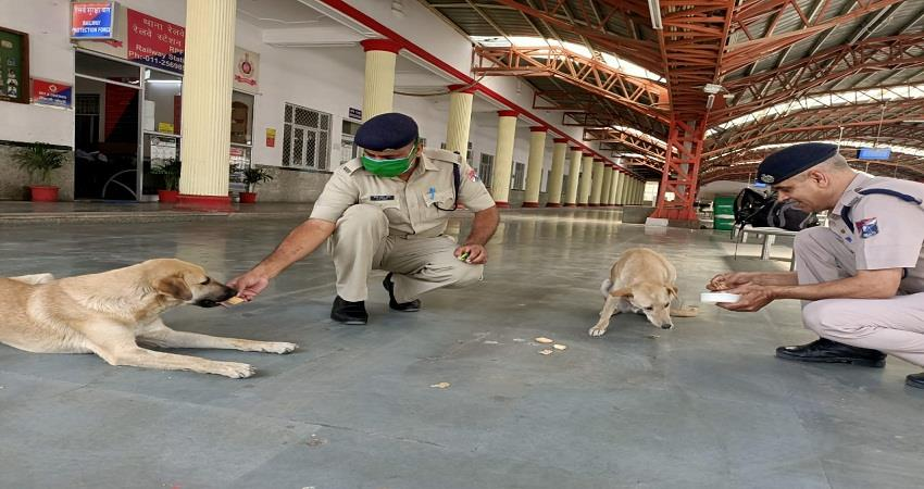 jawans are arranging food at the rpf police station in delhi cantt in corona crisis sohsnt