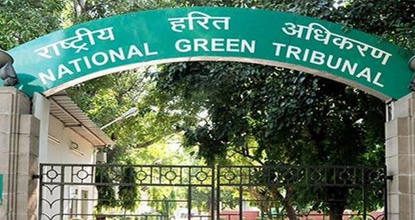 ngt-reprimanded-haryana-government-for-cutting-trees-in-mandawar-village-of-sohna