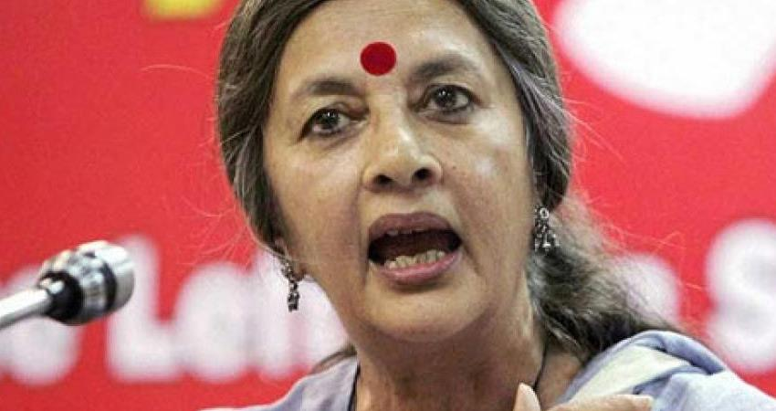 delhi violence high court directs lower court on cpim vrinda karat petition rkdsnt