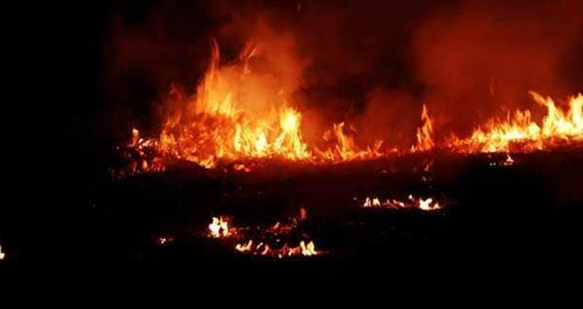 home guard duty scam fire broke out in suspicious condition in district commandant noida