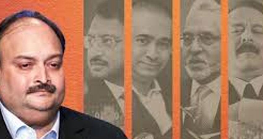 Delhi High Court Comment on Mehul Choksi plea in Netflix series Bad Boy Billionaires case rkdsnt