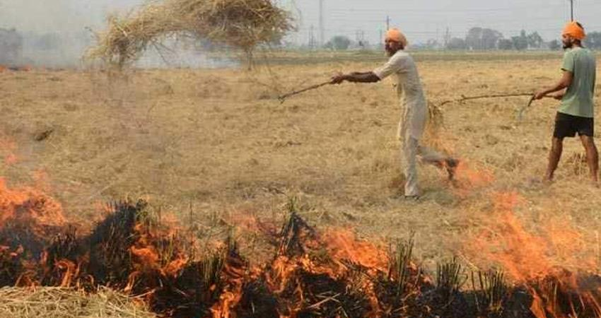 pollution punjab stubble burning increased 25 percent haryana slight decline