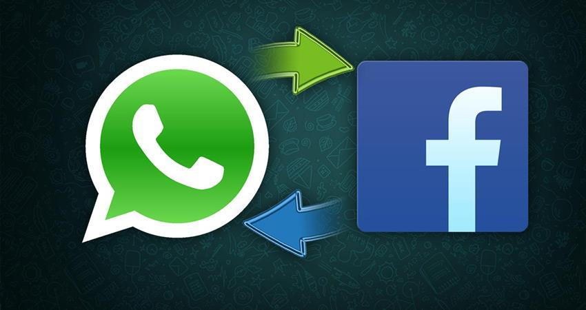whatsapp-face-book-fighting-hard-to-defeat-the-group-calling-section-vbgunt