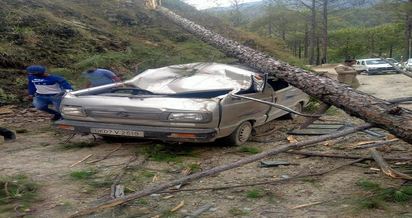 trees fell on car in yamunotri highway two injured albsnt