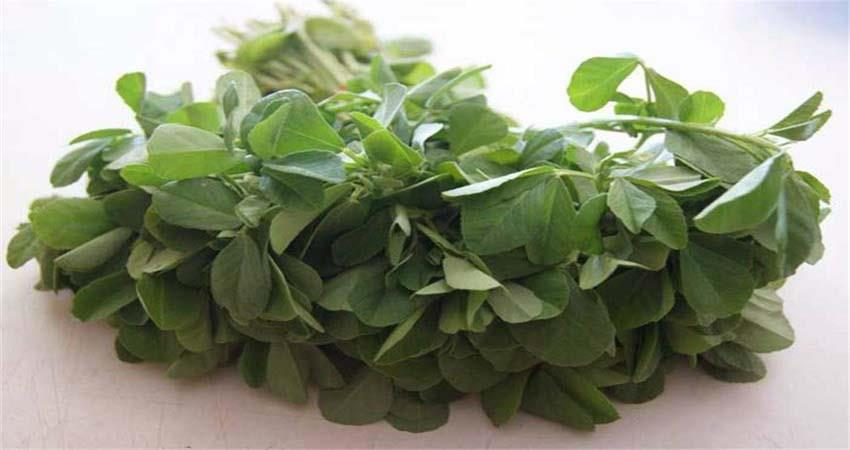fenugreek greens in winter will give you glow on the face sosnnt
